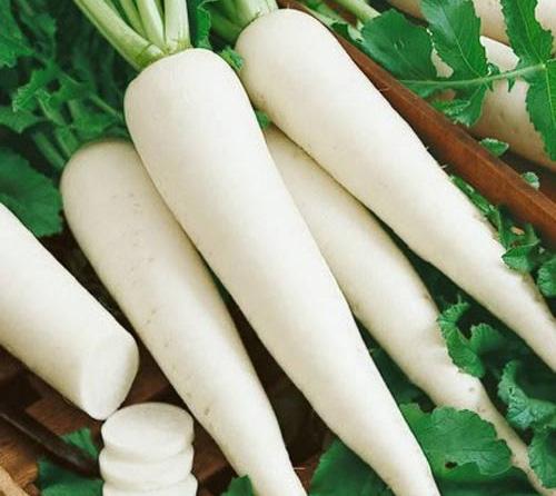 Công dụng chữa bệnh của củ cải trắng