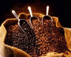 Uống cà phê, lợi và hại, bao nhiêu thì vừa?
