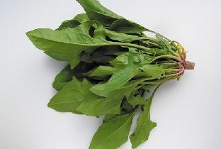 Những lợi ích tốt cho sức khỏe từ cây cải bó xôi