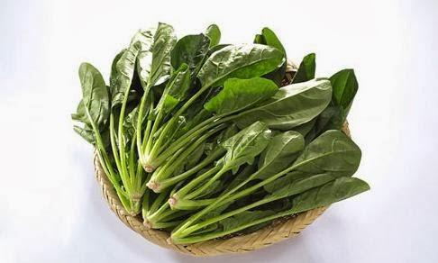 Cải bó xôi -Tác dụng của rau sạch cải bó xôi