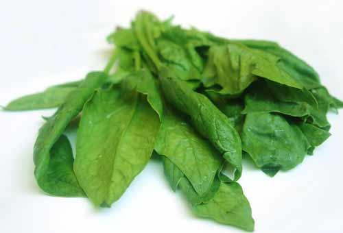Món ăn bài thuốc từ cải bó xôi